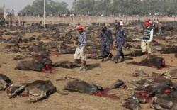 Nepal's senseless religiouscarnage